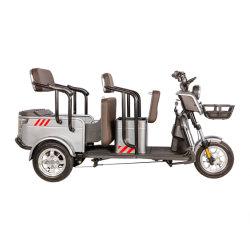 سيارة كهربائية تعمل بسيارات كهربائية عالية الجودة H5-1 48/60V إطار
