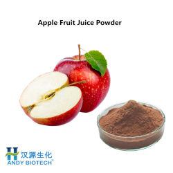 Apple-Puder-Auszug von der frischen Frucht für Food