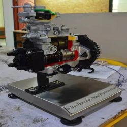 자동차 실험실 장비용 인라인 분사 펌프 절개 모델