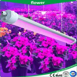 A China por grosso 150W IP65 cresça LED Light, LED tricolor para a prova de luz, lanterna LED