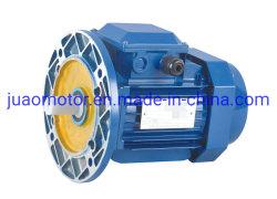 القدرة الحصانية الصغيرة ثلاثية الطور للمحرك الكهربائي الصيني غير المتزامن