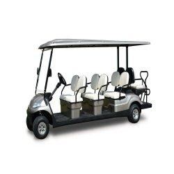 8 passeios de carro eléctrico do passageiro com certificado CE