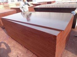 Film en bois lamellé fait face à la construction de contreplaqué de bois étanche