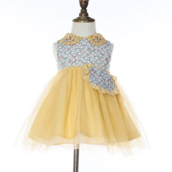 La conception de vêtements pour enfants d'été Frock robe pour bébé fille