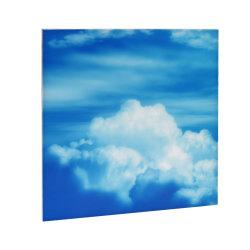 60*60см 40W БЕЗРАМНЫЕ LED небо потолочные панели