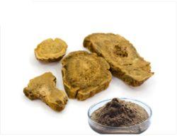 Extrato de raiz de ruibarbo Rheum palmatum / l / 9% Antraquinona