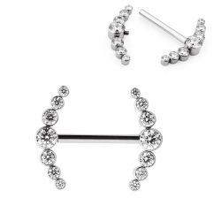 ASTM F136 лицевую панель из титана, CZ камень в верхней части кластера многопоточными Sexy ниппель кольцо пирсинг ювелирные украшения