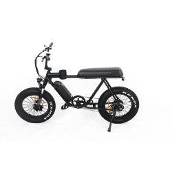 20 Zoll-fetter Gummireifen-elektrischer Fahrrad-Schnee-Strand-Kreuzer-elektrisches Fahrrad EL-Dn2011z