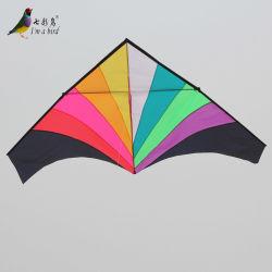 Для использования вне помещений Fun Sport огромный Rainbow Delta воздушного змея с длинного хвоста