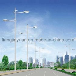 Induktion Electrodeless Straßenlaterne/Lampe - WJYDT - 15