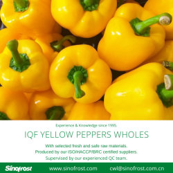 [إيقف] يجمّد [بلّ ببّر] حلوة [وهولس], خضراء/أحمر/صفراء