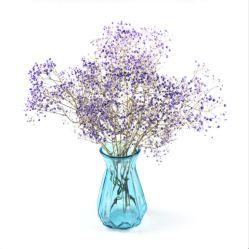 Vérin de la bonne conception élégante coloré clair Vase en verre de fleur, Glass Art Vase, vases en verre coloré