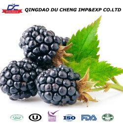 Good Quality IQF ドライ BlackBerry フルーツの販売