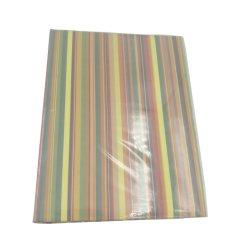Album di foto, Shrink spostato, casella riciclata del PVC, coperchio duro, marchio timbrato dorato, angolo rotondo, copyright protettivo