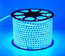 O neon impermeável ao ar livre 220V, 230V, 240V LED luzes de Faixa de alta tensão