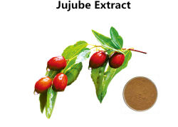 Polisaccaridi della pianta dell'estratto di dattero di /Chinese della frutta della giuggiola anti - allergico & ipotensivo