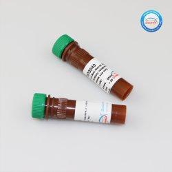 مقاومة عنزة بجز (H+L) HRP