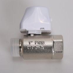 DN25 2 Way 1 بوصة Brass Male Thread Electric Control (التحكم الكهربائي في سنون خيط ذكر) بوصة واحدة في كل صمام كرة بمحرك ماء