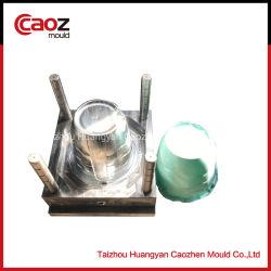 De plastic Vorm van de Injectie van de Bak van de Vuilnisbak/van het Huisvuil in China
