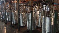 Fil galvanisé/Electro/Fil galvanisé Fil en acier galvanisé pour la construction
