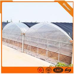 Nuevo estilo Anti-Dripping Túnel de la agricultura la película de plástico de doble capa de gases de efecto