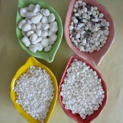 Natural de suprimento de cor branca Cobblestone para decorar polidos Pebble