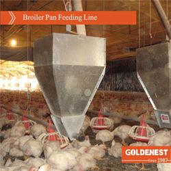 Controlo completo de frangos de Camada// EQUIPAMENTO obtentor / Avícola de equipamento para casa de frango