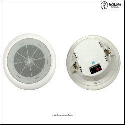 [100ف] [3و] ثابتة جهد فلطيّ سقف المتحدث مع إحاطة