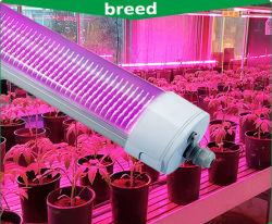 China Distributeur 150W IP65 LED Grow Light, LED Tri Proof Light, DJ-apparatuur, miniprojector