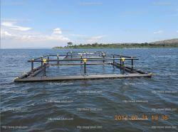 밖으로 HDPE River Aquaculture Grow Fish Farm