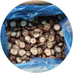 IQF congelados orgânicos em estufa a granel cogumelo Shiitake
