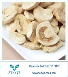 Getrockneter Champignon-Pilz