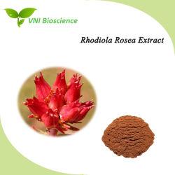 استخراج روديولا روسيا الطبيعي المعتمد من قبل المنظمة الدولية للتوحيد القياسي لتحسين المناعة