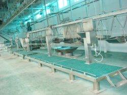 양 새로운 자동적인 기계 삭제 또는 커트는 또는 직업적인 20years 육류 처리 Slaughtering를 냉장한다