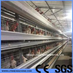 Gabbia di batteria del pollame di strato dell'azienda agricola di pollo con la rete metallica della saldatura nel Vietnam