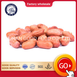 Erdnuss fett/Java, rohe organische Erdnuss-Erdnuss