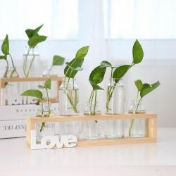 Creative moldura de madeira hidroponia vaso de vidro para Home Office Decoração