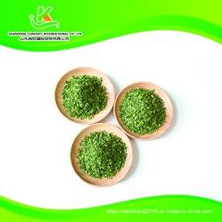 Neues Getreide der Flugleitanlage-Schnittlauch-chinesische Fabrik-2020 für feinschmeckerische Nahrungsmittel