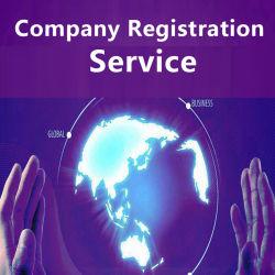 Semi, professionnel de la Chine de l'entreprise, Service d'enregistrement enregistrement de marque, demande de brevet