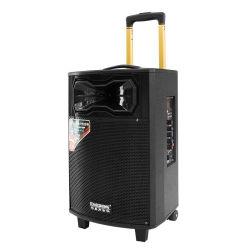 木製のキャビネット100W Qx-1031 12V 5ahの鉛電池10のインチのUSB SD FMのリモート・コントロール無線電信Micが付いている実行中のマルチメディアのスピーカー