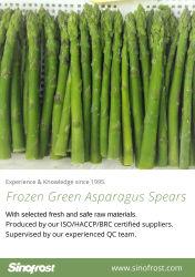Germogli verdi dell'asparago di IQF, asparago verde Wholes di IQF, punte dell'asparago di IQF & tagli verdi, tagli verdi dell'asparago di IQF, germogli verdi congelati dell'asparago, asparago congelato