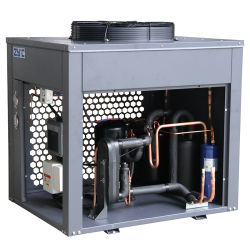 육류 해산물 의학 빠른 냉동 빙판 만들기 저온 공기 냉장 보관실용 냉각 스크롤 냉동 콤푸레셔
