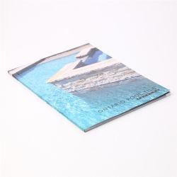 2020 de Goedkope Druk van de Brochure van de Vlieger/van het Pamflet/van de Catalogus van het Boek van het Sprookje Professionele Promotie