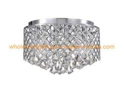 Metal Cristal Lámpara de techo (WHC-601)
