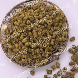 Preciosos Yihutang hierba china medicina Officinale Dendrobium Candidum