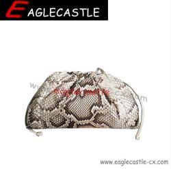 La mode PG / Femmes SAC SAC / sac à main / châssis métallique / soir SAC SAC (CX19311)
