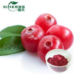 Natürliche Cranberry-Extrakt Anthocyane, Anthocyanidine und Proanthocyanidine (OPC)