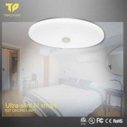 La vente en gros la décoration intérieure moderne modulable de fantaisie Smart LED lampe de plafond