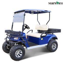 セリウムの公認のリチウム電池式 Seaterの2つの電気スポーツタイプの車(DH-C2)