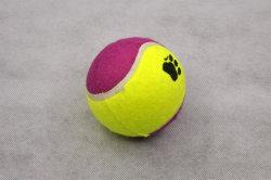 Varios Color mayorista juguete de entrenamiento de mascotas perros gatos Tenis cachorro juguete Bola (PTZW21082)